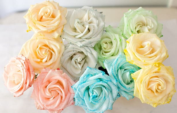 Hello wonderful how to dye rainbow flowers for How to color roses rainbow