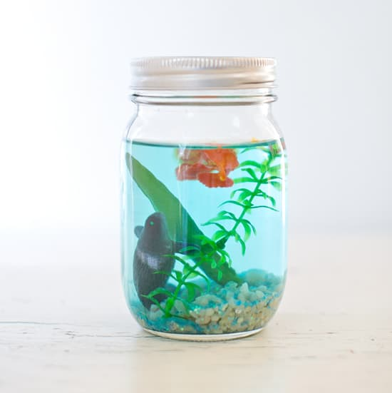 Hello wonderful make a mason jar aquarium for Projects to do with mason jars
