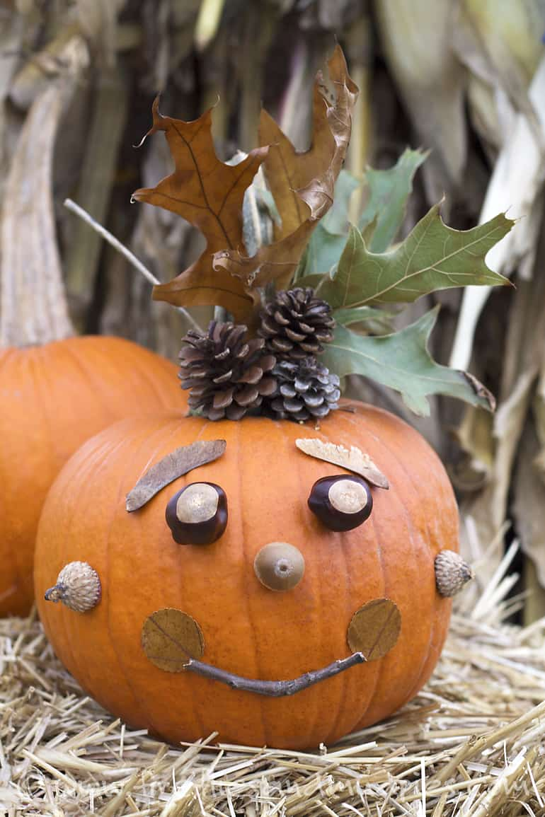 Hello wonderful artsy no carve pumpkin ideas to try